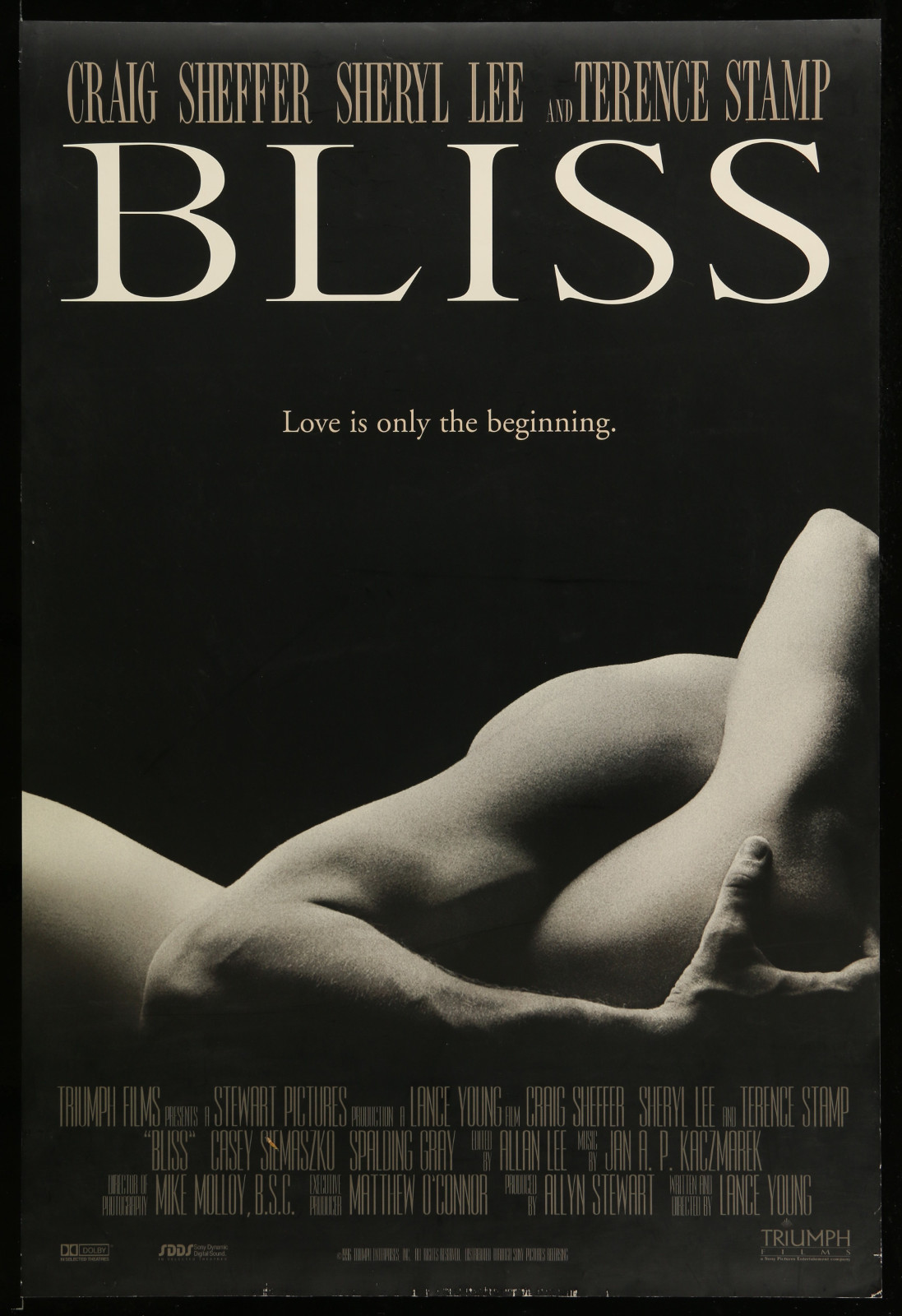 Bliss 2A361 A Part Of A Lot 30 Unfolded Double-Sided And Single-Sided 27X40 One-Sheets '90S-00S Variety Of Images!