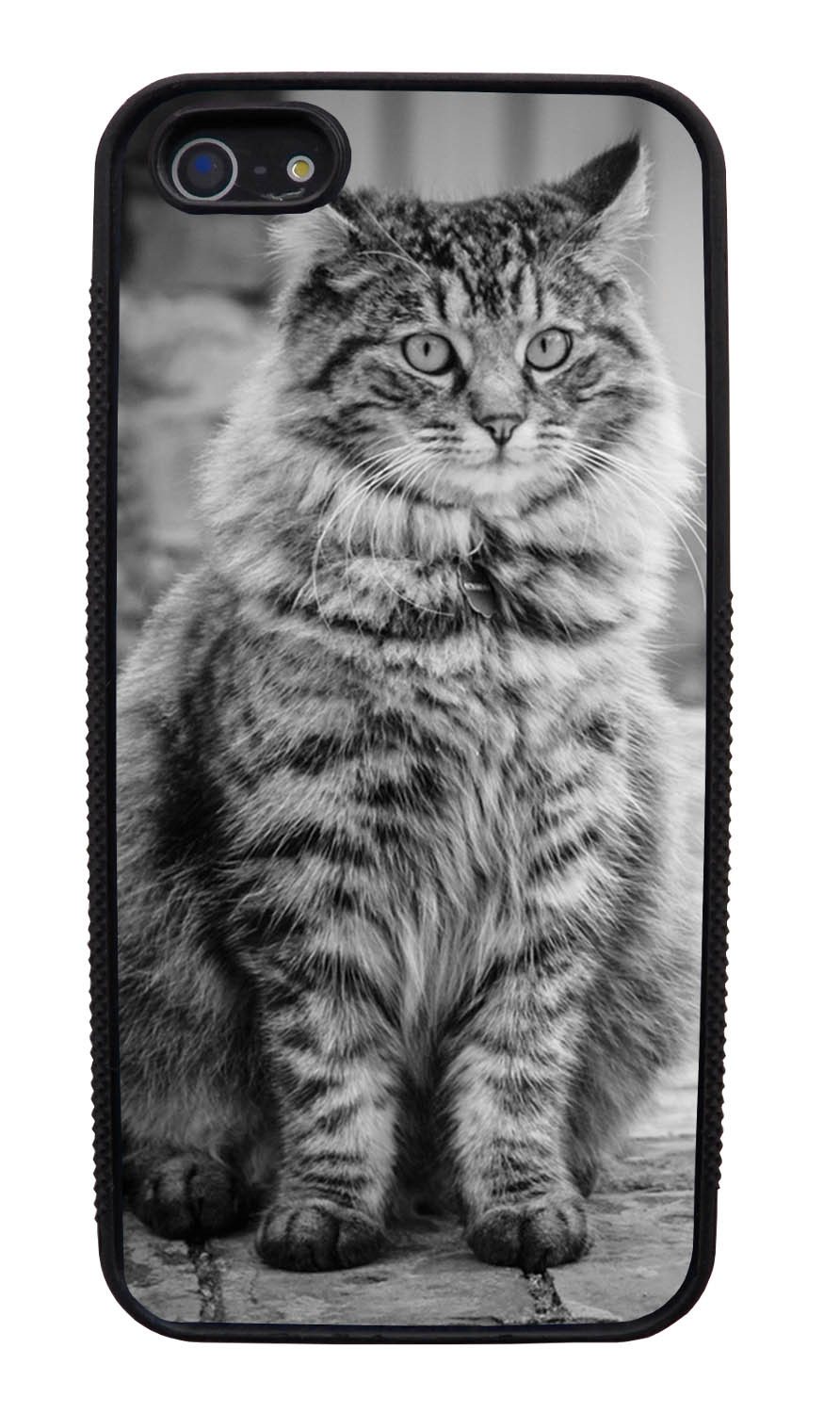 Apple iPhone 5 / 5S Cat Case - Fur-ball Cat Photo - Cute Pictures - Black Slim Rubber Case