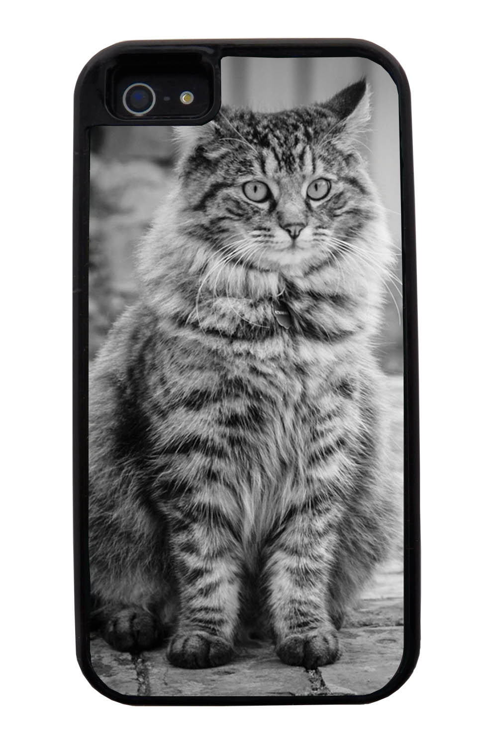 Apple iPhone 5 / 5S Cat Case - Fur-ball Cat Photo - Cute Pictures - Black Tough Hybrid Case